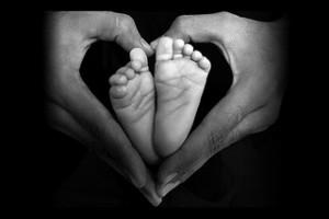 [www.stockpholio.com]-5782319154_4 Handful of Love